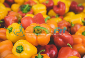 bell peppers are one of the best foods