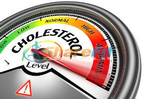 Dietary Cholesterol information